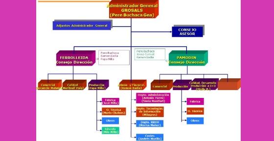 Organigrama Grup GROSALS 1a Etapa.