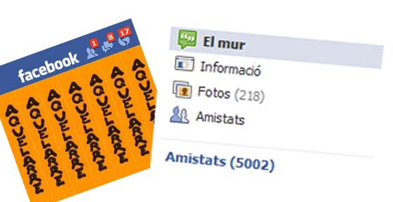Facebook (Capital Social)